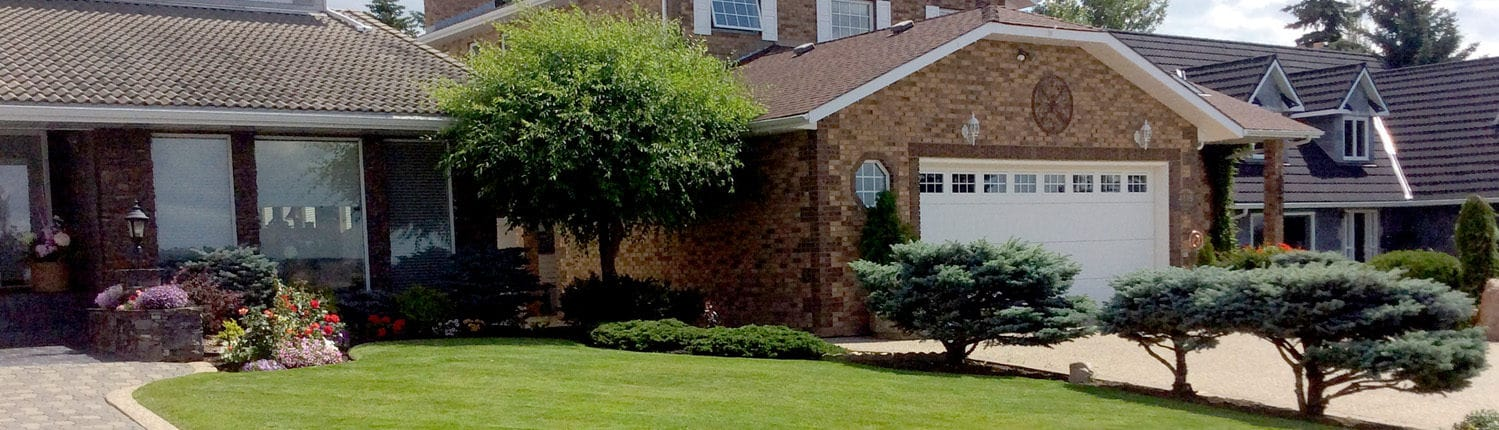 Professionally pruned trees with tidy lawn